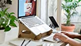 Lüp Laptop Stand Basico Plastic-Free Sustainable Recycled Carton lup